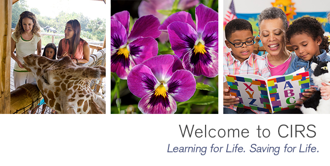Welcom to CIRS  Learning for Life. Saving for Life.